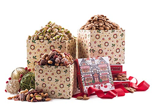 Benevelo Gifts 3 Tier Gourmet Nuts & Snacks Holiday Gift Set Nuts and Dried Fruit