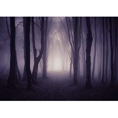 Top 10 Halloween Photo Backdrop – Photographic Studio Photo Backgrounds