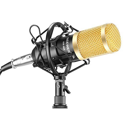 Neewer NW-800 Professional Studio Broadcasting & Recording Microphone Set Including 1NW-800 Professional Condenser Microphone + 1Microphone Shock Mount + 1Ball-type Anti-wind Foam Cap + 1Microphone Power Cable Black